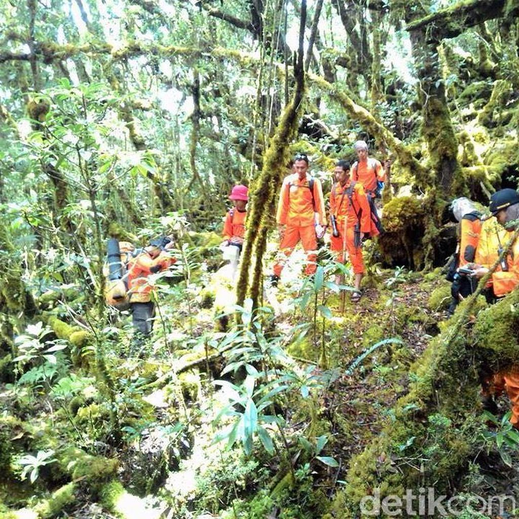 3 Pendaki yang Hilang di Gunung Latimojong Ditemukan Selamat
