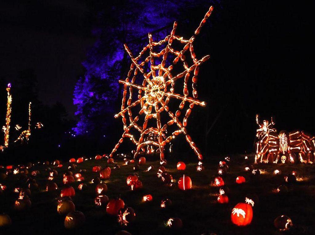 Foto: 7.000 Labu Bercahaya di Perayaan Halloween