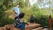 Tangkap 3 Pembalak Liar di Aceh, Polisi Sita Kayu Gelondongan
