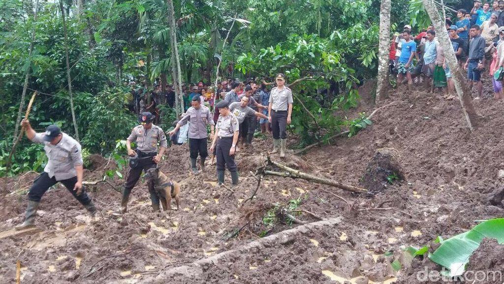 Tiga Hari Pencarian, Tiga Korban Longsor di Jember Belum Ditemukan