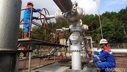 Mengintip Harga Harta Karun Energi RI yang Kian Murah