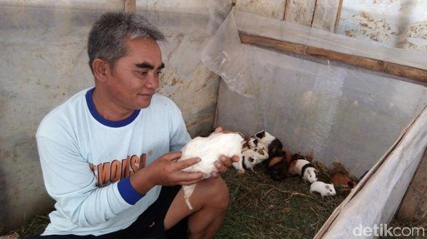 Minto menunjukkan salah satu hewan peliharaannya.