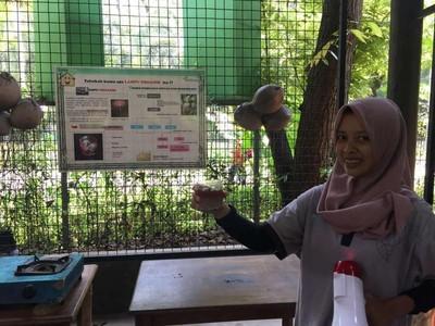 Weekend di Ancol, Bisa Belajar Bikin Lampu dari Buah Kelapa