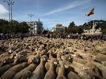 Foto: Ratusan Domba Geruduk Pusat Kota Madrid, Ada Apa?