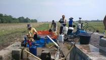Warga Slangit Cirebon Tempuh Ribuan Meter untuk Air Bersih