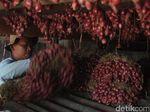 Harga Jual Anjlok, Petani Bawang Merah Brebes Gudangkan Hasil Panen