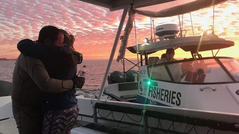Penyelam Inggris Selamat dari Kejaran - Jakarta Seorang penyelam asal Inggris harus berenang sepanjang kilometer untuk menyelamatkan diri lantaran oleh hiu di pesisir sedang