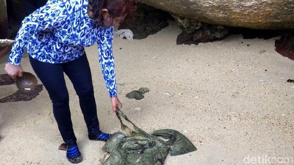 Yuk Intip Susi Bersih-bersih di Pantai Batu Sindu Natuna