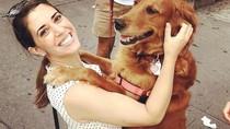 Selamat! Pelihara Anjing Diklaim Bikin Panjang Umur