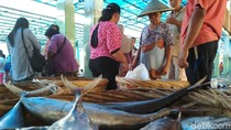 Cuaca Normal, Nelayan Trenggalek yang Menganggur Kembali Melaut