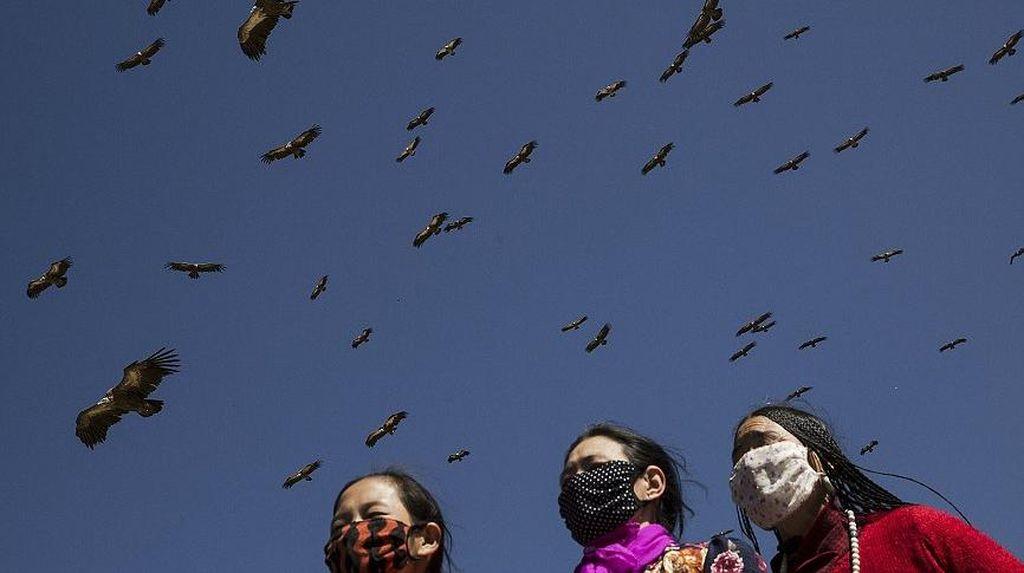 Pemakaman Langit: Jenazah Dimakan Burung Bangkai