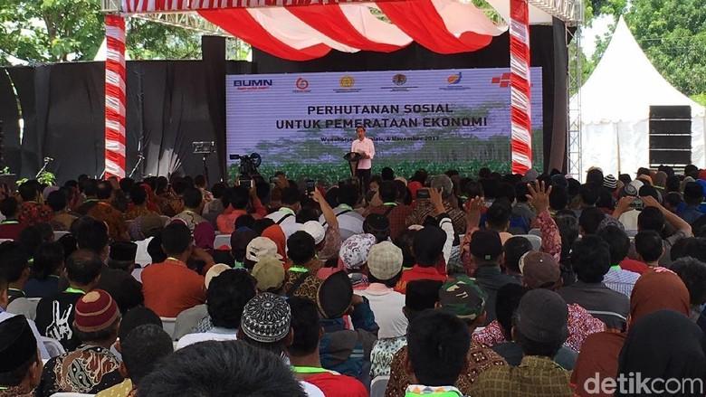 Jokowi Beri Surat Pemanfaatan Hutan - Boyolali Presiden Joko Widodo memberikan Surat Keputusan Izin Pemanfaatan Hutan di kawasan Pemalang dan Boyolali kepada itu berlangsung