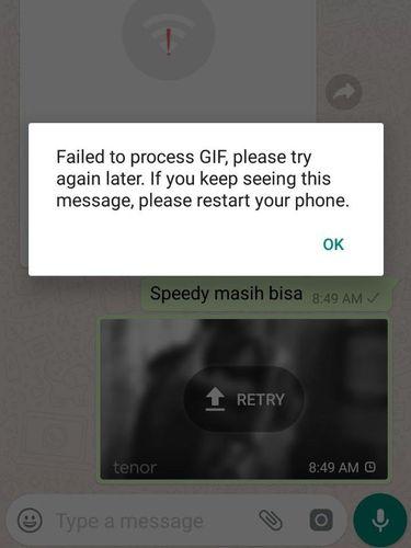 Gambar Gif di WhatsApp Tiba-tiba Tidak Bisa Diakses