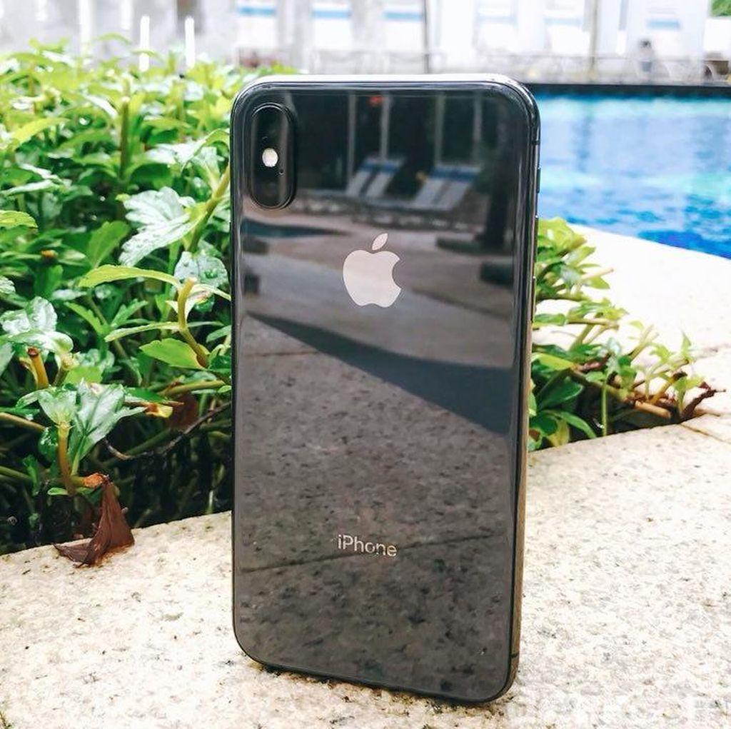 Kamera iPhone Lebih Jadi Andalan Ketimbang Canon dan Nikon