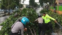 Tak Hanya Pohon Tumbang, Atap Rumah Juga Rusak di Banjarnegara