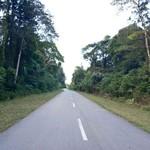 Ada Trans Papua,Timika-Wamena Tak Perlu Lagi Pakai Pesawat