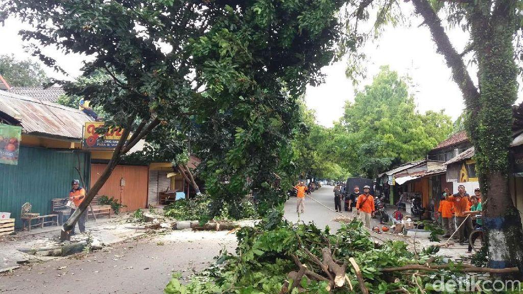 Hujan dan Angin Kencang Masih Berpotensi Terjadi di Banjarnegara
