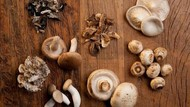 Antioksidan pada Jamur Terbukti Bisa Cegah Penuaan Dini