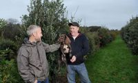 <i>Black Truffle</i> Seharga Rp 26,8 Juta Per Kg Berhasil Ditemukan di Inggris