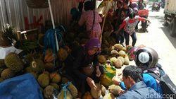 Menikmati Durian Kucing Ngruwel di Purworejo