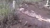 Belajar dari Kejadian Mayat Muncul ke Permukaan Makam di Kalbar