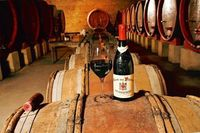 Wine yang diolah dengan cara fermentasi kuno.