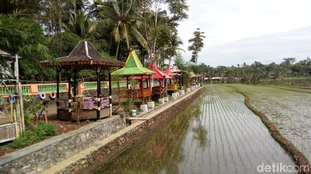 Desa Kemetul di Kabupaten Semarang menyajikan pemandangan persawahan.