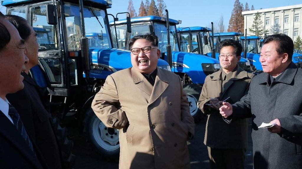 Tawa Kim Jong Un Saat Jajal Traktor