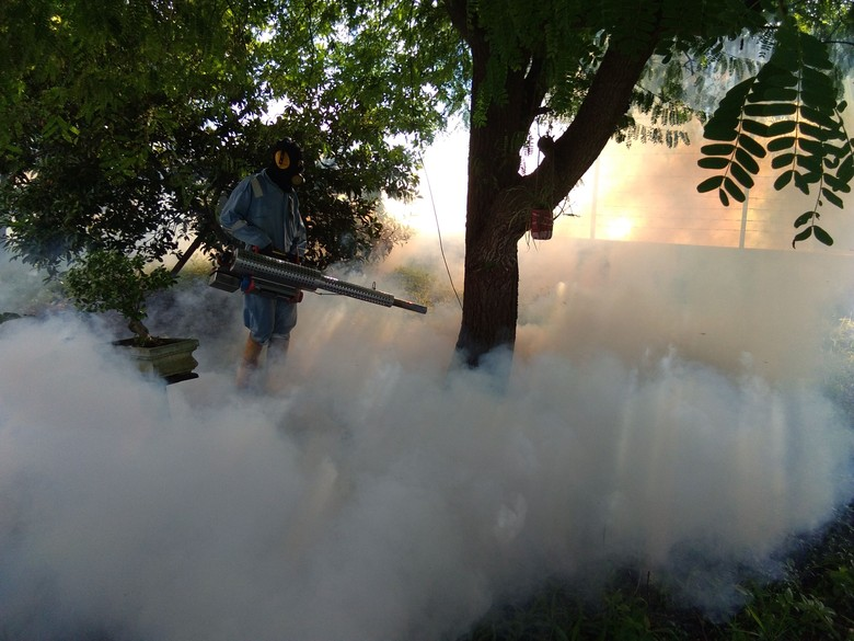Kasus Demam Berdarah di Lhokseumawe - Kota Lhokseumawe Sepanjang kurun waktu Januari hingga November Dinas Kesehatan Kota Lhokseumawe mencatat sedikitnya kasus Demam Berdarah Dengue