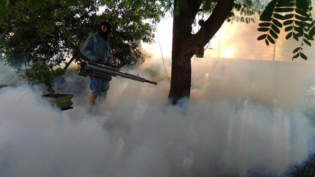 100 Kasus Demam Berdarah di 2017, Lhokseumawe Di-fogging