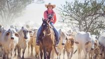 Cara Pelajar di Pedalaman Australia Rayakan Kelulusan