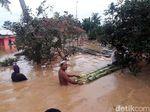 Cilacap Banjir, Ratusan Warga Tingga di Pengungsian