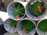 Komisi IV DPR Minta Penyekap Burung di Paralon Juga Disanksi Sosial