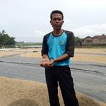 Cerita Asefullah, Petani yang Bisa Jual Beras Rp 8.000/Kg ke Jakarta