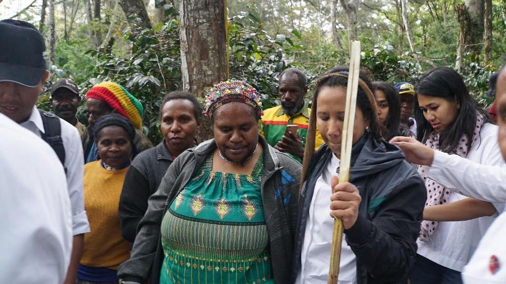 Rini Soemarno Blusukan ke Perkebunan Kopi Papua