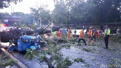 Kesaksian Slamet yang Bajajnya Tertimpa Pohon di Gambir