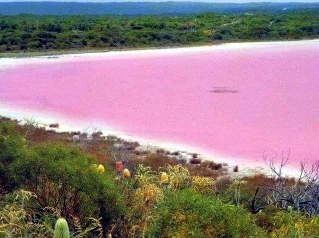 Foto: Danau Pink Australia yang Sudah Tidak Pink Lagi