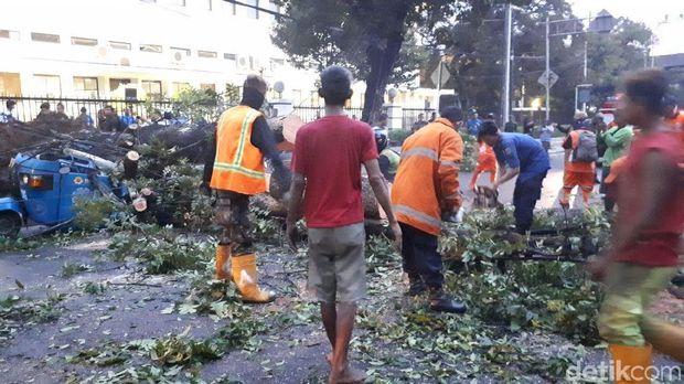 Penanganan pohon tumbang di samping Masjid Istiqlal