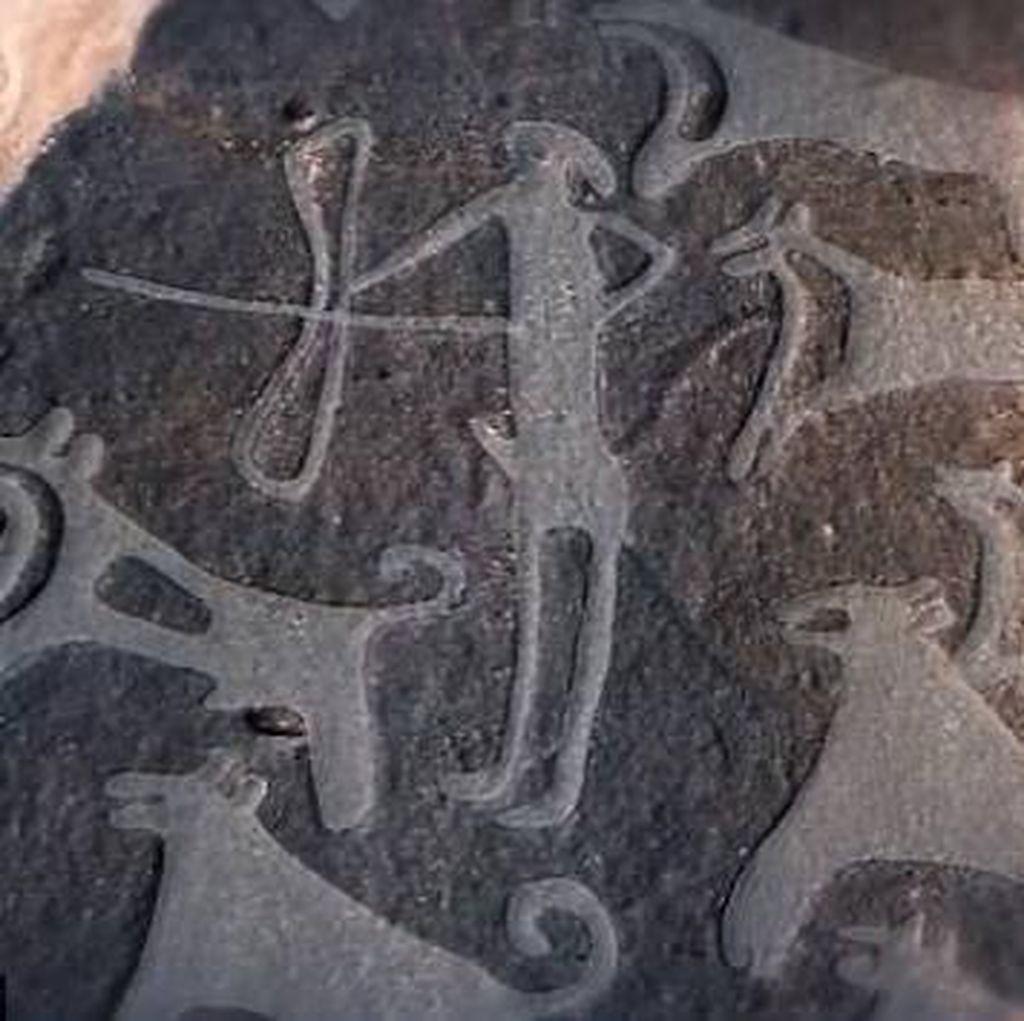 8.000 Tahun! Anjing Tertua di Dunia Sahabat Manusia