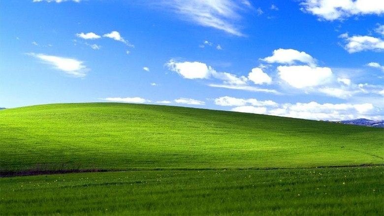 Melihat Sosok Di Balik Wallpaper Ikonik Windows XP