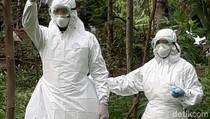 Tiga Warga Terindikasi Antraks di Bondowoso, 1 Orang Negatif