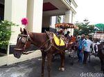 Kuda dari Berastagi Ikut Simulasi Kirab Kahiyang-Bobby di Medan