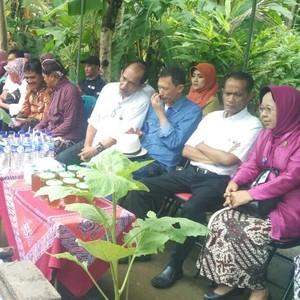Kementan Suntik Rp 100 Juta ke Kelompok Tani di Kulon Progo