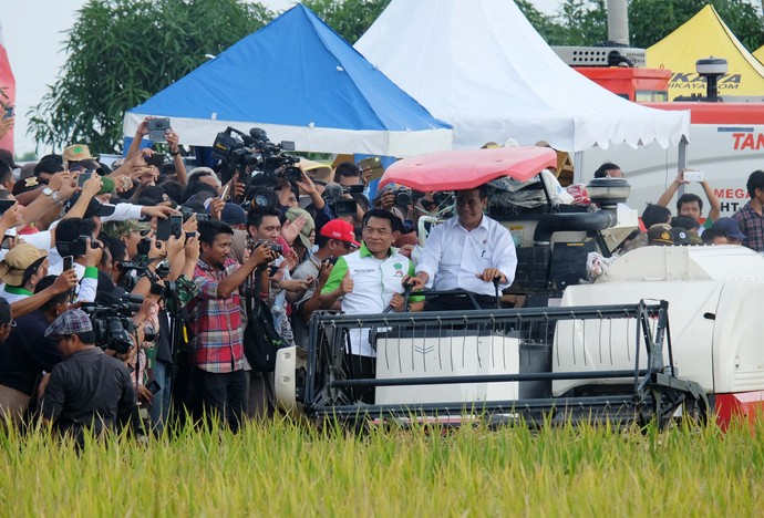 Mentan Amran dan Ketua HKTI Panen Padi di Indramayu