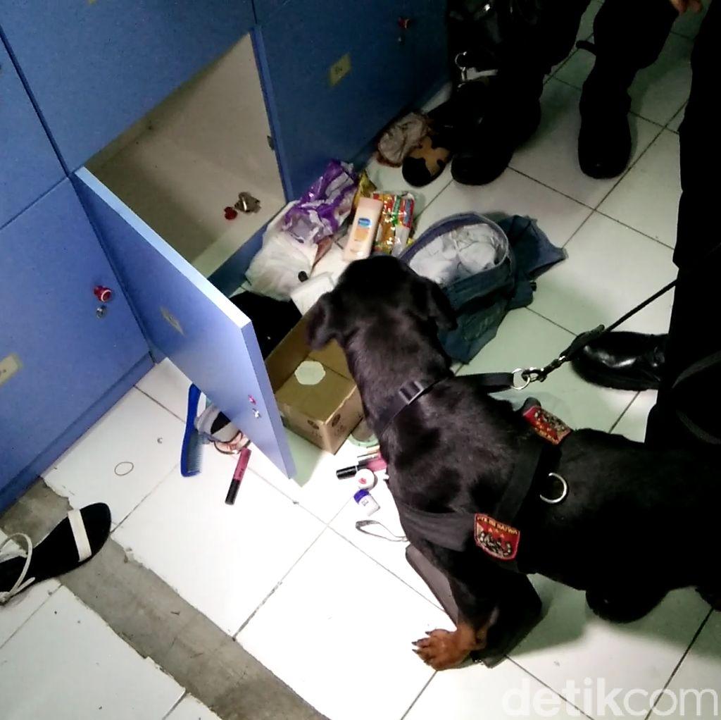 Video: Lihainya Bule dan Dora Endus Narkoba di Kelab Malam Bekasi