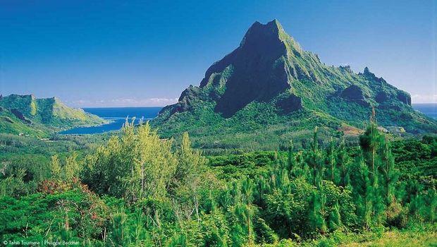 Pegunungan Hijau di Pulau Moorea (Tahiti Tourism)