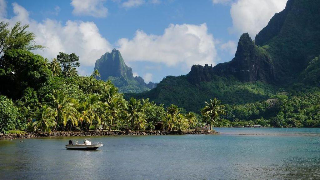 Bukan Cuma Bora-bora, Ini Pulau Moorea yang Tidak Kalah Indah