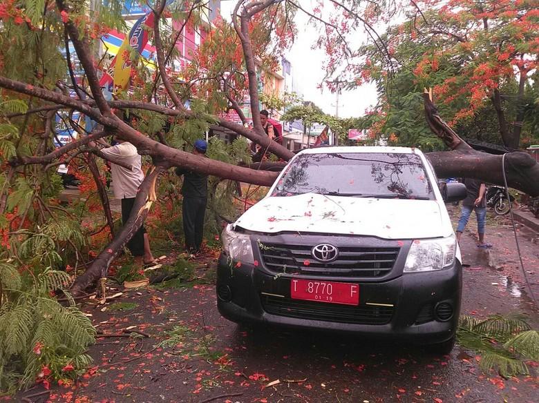 Mobil Pelat Merah di Karawang - Karawang Hujan deras dan angin kencang menumbangkan sebatang pohon di Jalan Kabupaten Jawa Satu unit mobil pelat merah