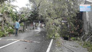Wilayah Ini Terdampak Siklon Dahlia   , Warga Diimbau Waspada