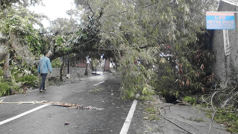 Wilayah Ini Terdampak Siklon Dahlia, Warga Diimbau Waspada